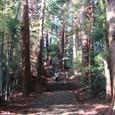 04 熊野古道を歩く