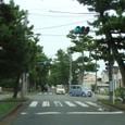 14 舞阪の松並木